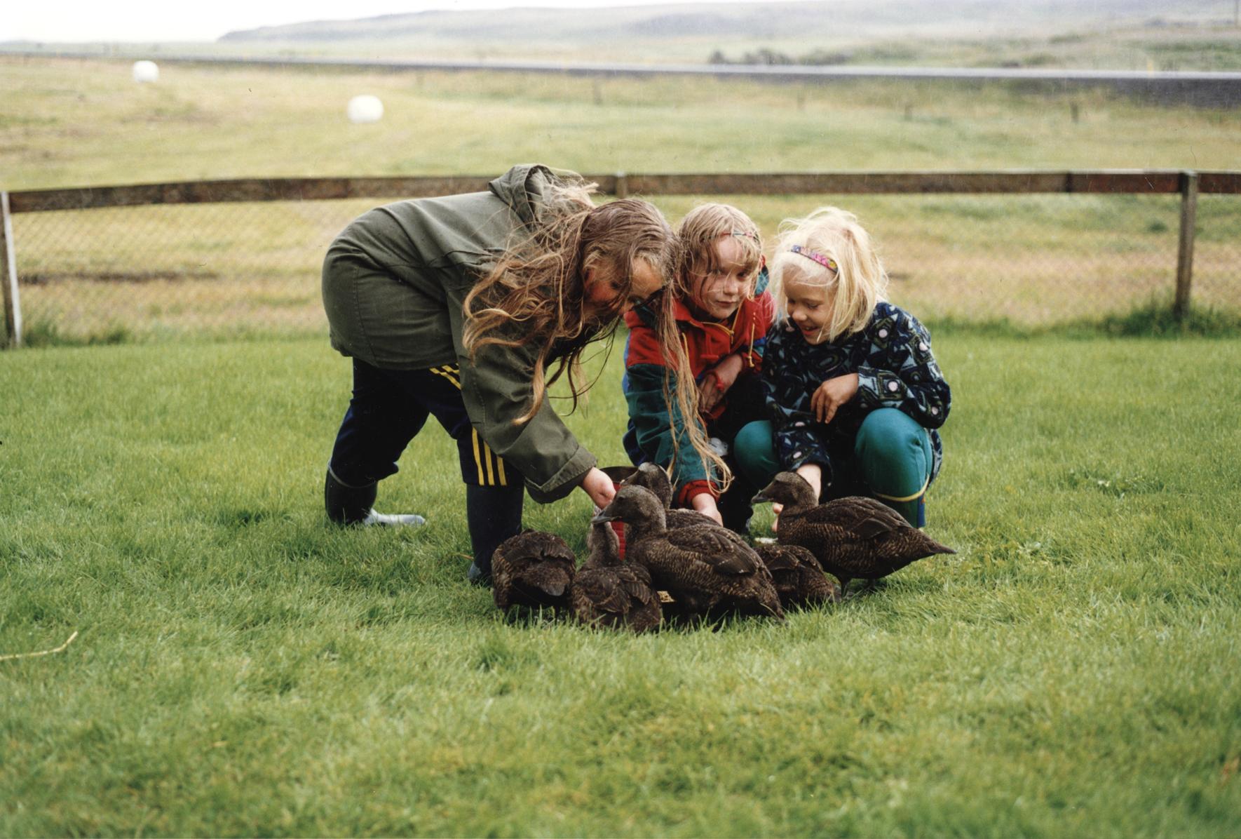 Sumarfrí á Suðurlandi